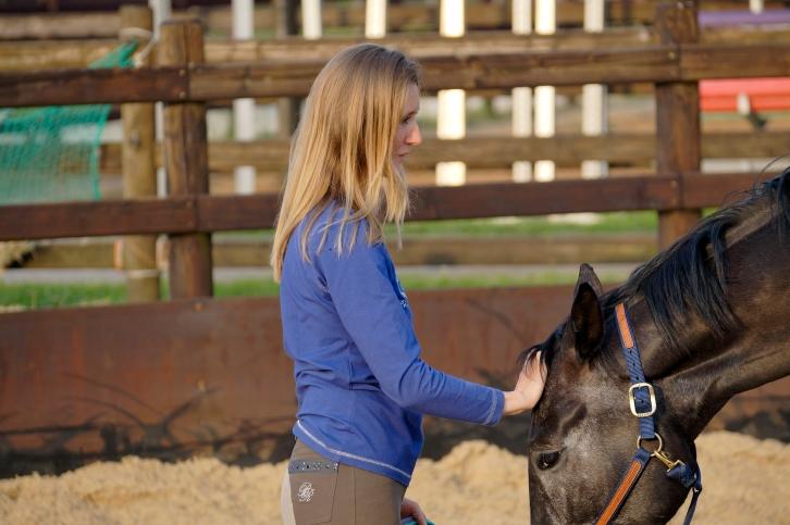 Merel Burggraaf horse equine horses healing art