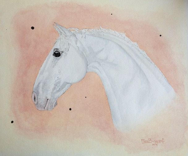 A Horse's Glance