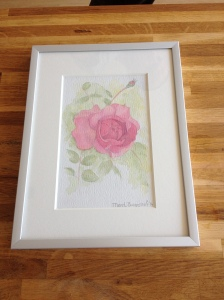 Bonica Rose - framed (sold)