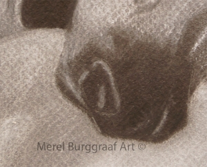 Merel Burggraaf Art Lipizzaner Drawing crayon conte equine paard horse detail mouth