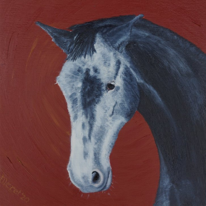 Merel Burggraaf Art oil painting equine horse horses portrait artist grey